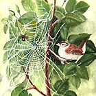 Spider and Wren by Jorja