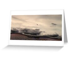 Plane in the Cairngorms Greeting Card