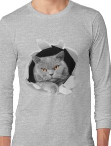 Cat peeking out of a hole Long Sleeve T-Shirt