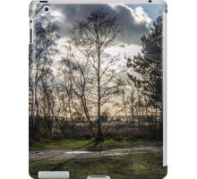 Sparse Tree iPad Case/Skin