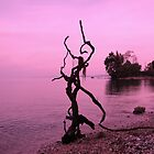 Pink thing- Benitses, Corfu by Sarah-jane Monro