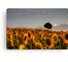and then there is a tree Canvas Print
