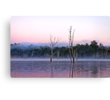 Misty Morning -Moogerah Dam Canvas Print