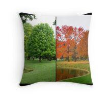 Summer Turns to Autumn Throw Pillow