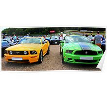 Yellow and Green Mustangs Poster
