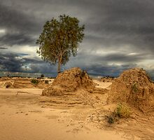 Approaching Storm - Lake Mungo by Hans Kawitzki