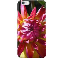 Bright Colors iPhone Case/Skin