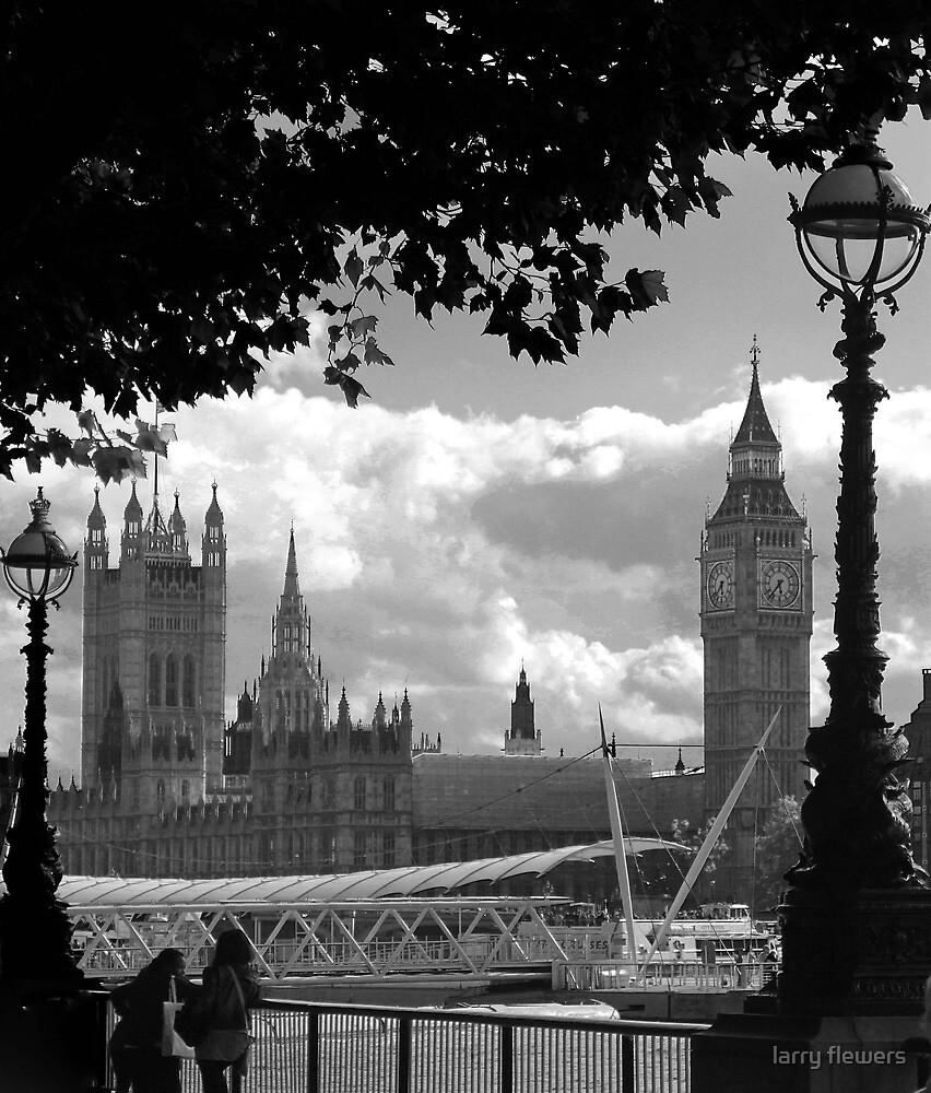Parliament (a view from the South Bank) by larry flewers
