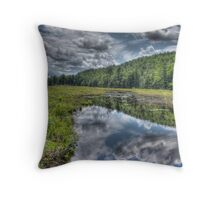 Along a country road in Massachusetts HDR  Throw Pillow
