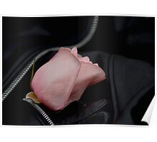 Roses and Leather Poster