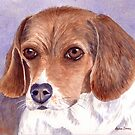 Bonnie (Beagle) by Anne Sainz