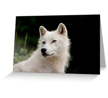 A Wolfie for Dorothy! Greeting Card