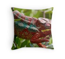 """""""I Spy Something.... Red"""" Throw Pillow"""