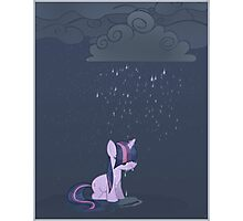 Rainy day pony Photographic Print