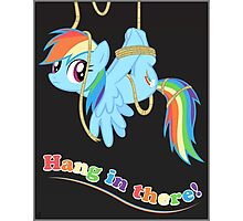 Hang in there, Pony! Photographic Print