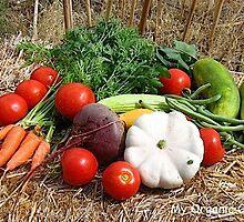 My Organic Garden - 2011 by Ron Wright