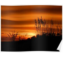 Sanibel Skyscape No.6 {Sea Oats at sunset} Poster