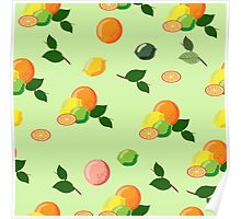 Seamless  citrus pattern. Poster