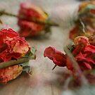 Rose Posie by Lozzar Flowers & Art