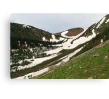 Snowy, grassy slopes Canvas Print