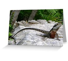 Reptilian Relaxation Greeting Card