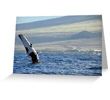 Pectoral Fin of a Whale in Maui Greeting Card