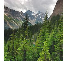 Ranges and trees Photographic Print