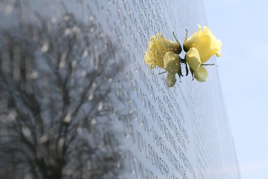 Vietnam War Memorial in Washington D.C. by Callie Smith