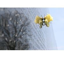 Vietnam War Memorial in Washington D.C. Photographic Print