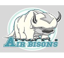 Buffalo Air Bisons Photographic Print