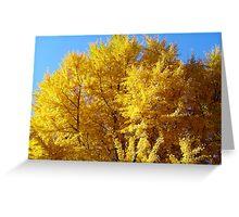 Gingko TreeTop Greeting Card
