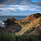 Cape Schanck by Melanie Travis