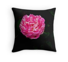 Raspberry Ripple Throw Pillow