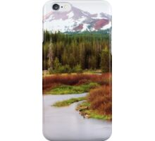 Late Fall in New Mexico iPhone Case/Skin