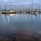 Royal Geelong Yacht Club by Lynden