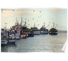 Kalk Bay Harbour Poster