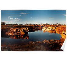 Watering Hole Western Australia Poster