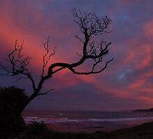 Okitu sunset by donnz
