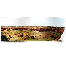 Wandina Gorge Western Australia Poster