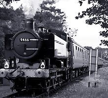 Pannier tank at Wymondham by Rob Hawkins