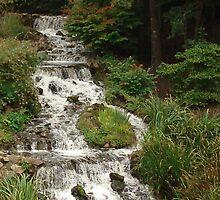 River Rush by hikaruko