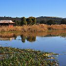 Panboola Wetlands by Jackie  Smith