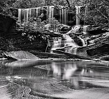 Somersby Falls, monochrome by bazcelt