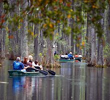A Ride through the Cyprus Swamps in SC by Photography by TJ Baccari