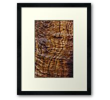 fresh wood grain Framed Print