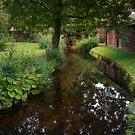 Still Waters Run Deep - Morden Hall Park, London. by DonDavisUK