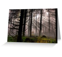 Let The Light in Greeting Card