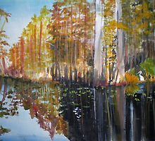 Swamp Reflection by Newhouser