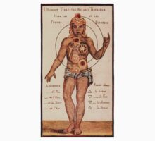 Chakras by Johann Georg Gichtel 1638 by Hedrin
