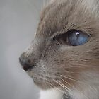 Pensive by MiloAddict
